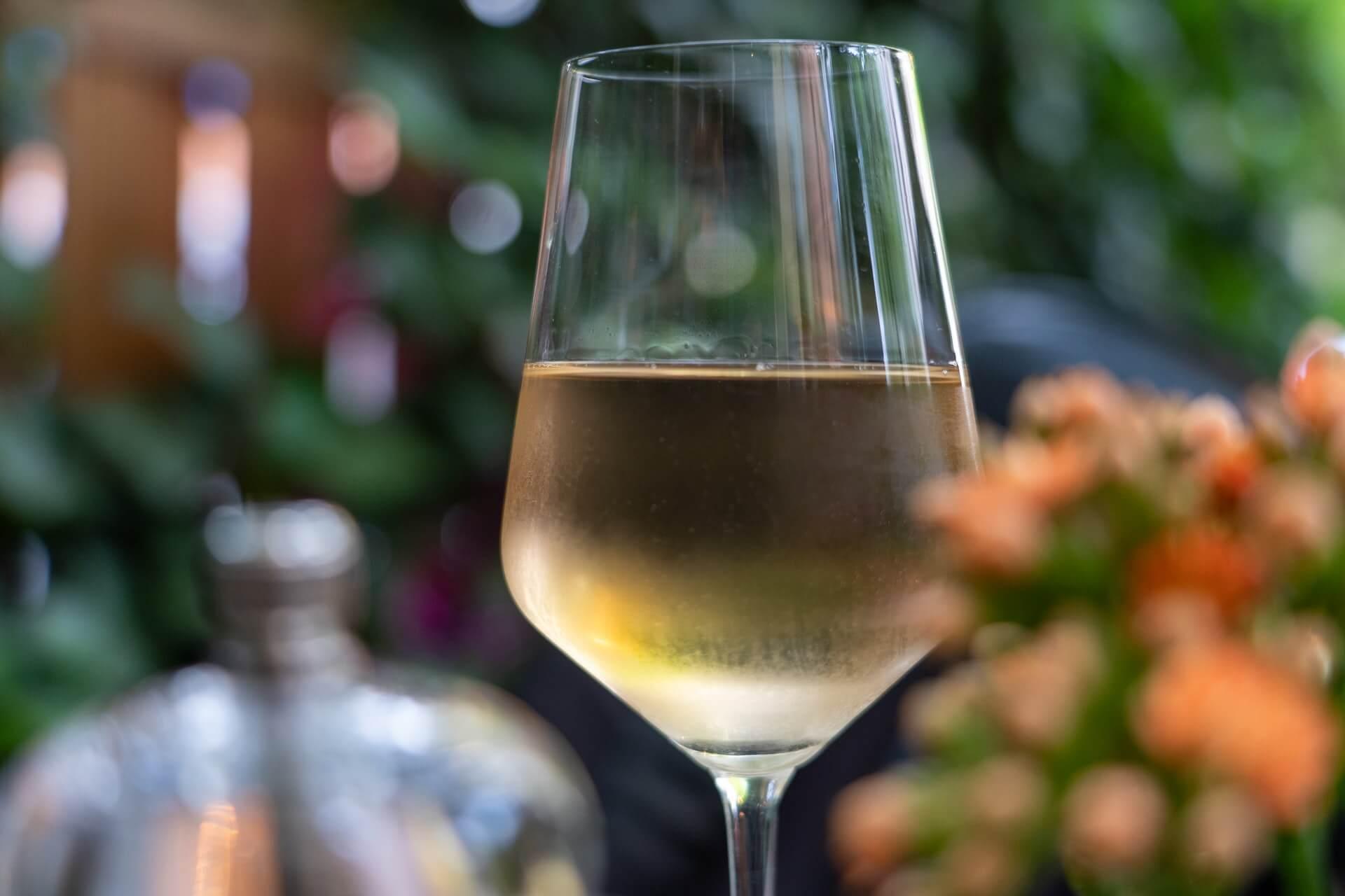 Vrhunska dalmatinska vina